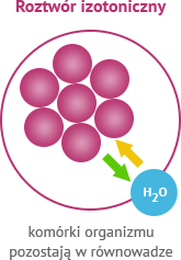 Roztwór izotoniczny - komórki organizmu pozostają w równowadze